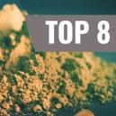 Top 10 Effects of Kratom