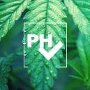 Grow Tip: The Importance of the pH Level