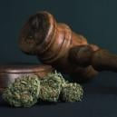 10 Reasons ALL Drugs Should Be Legalised