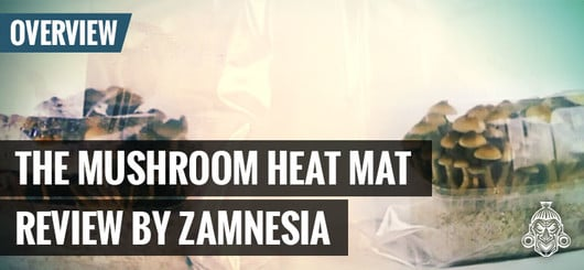 The Mushroom Heat Mat By Zamnesia