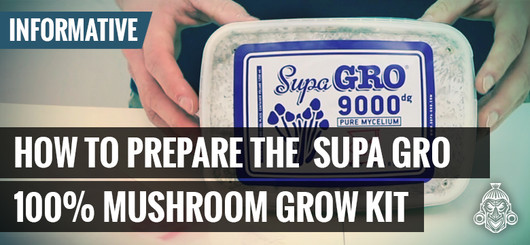 How To Prepare The Supa Gro 100% Mushroom Gro Kit
