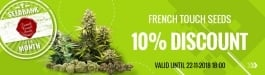 Offer French Touch Seeds