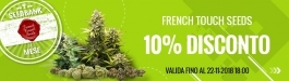 Offerta French Touch Seeds