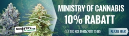 Angebot Ministry of Cannabis