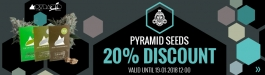 Offer Pyramid Seeds