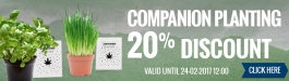 20% Discount Companion Planting