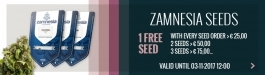 Free Cannabis Seeds!