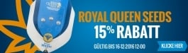 15% Rabatt Royal Queen Seeds