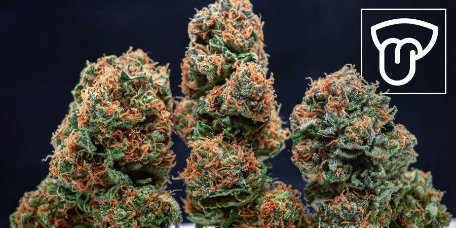 Indoor vs Outdoor Grown Cannabis: Flavour