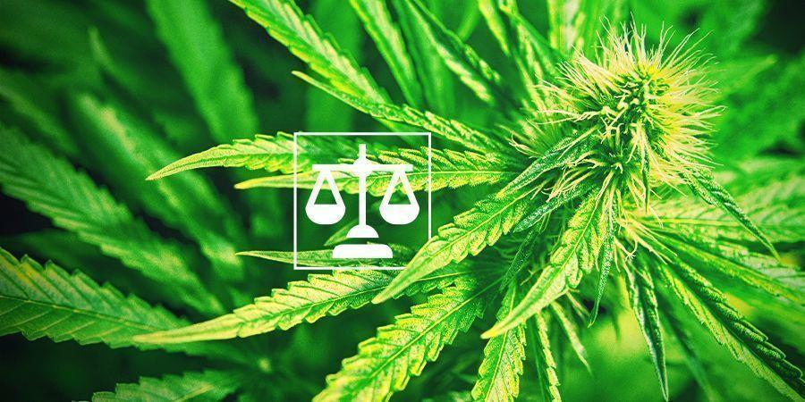 Legality Cannabis
