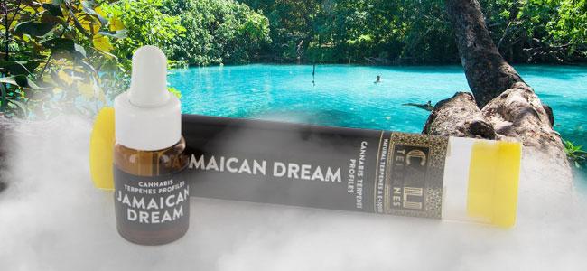 Jamaican Dream (Cali Terpenes)
