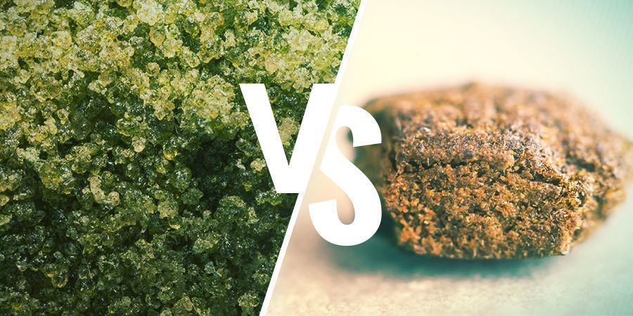 WHAT HASH IS BEST FOR VAPING? (CRUMBLY VS PLIABLE)