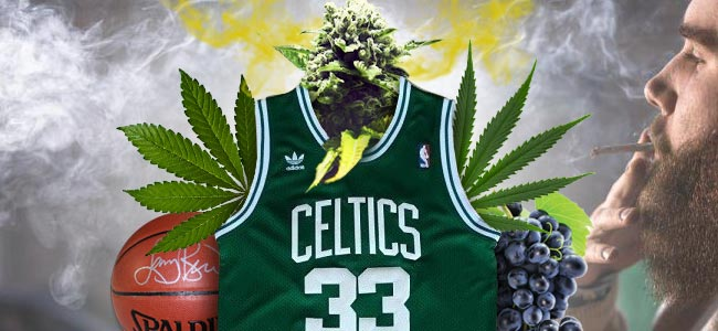 Larry Bird Kush - Learn All About This New Cannabis Legend