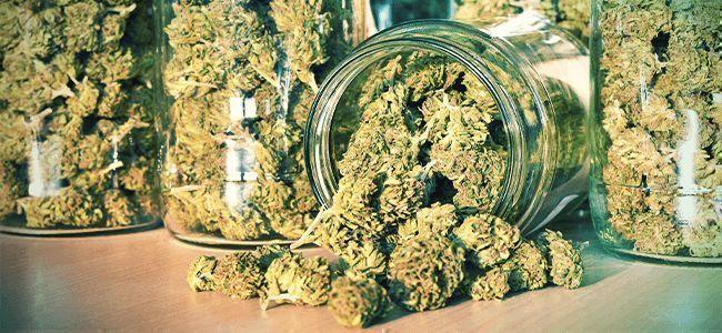 Smoking Mistake: Storing weed