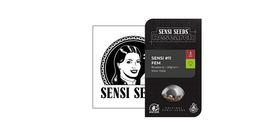 Sensi 11 (Sensi Seeds Research)