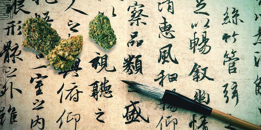 Cannabis: A Long-forgotten Medicine