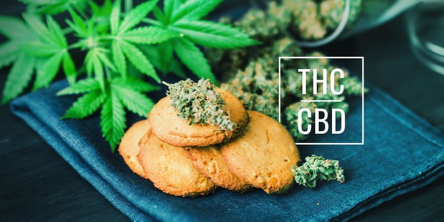 What's The Difference Between CBD And THC Cannabis Edibles?