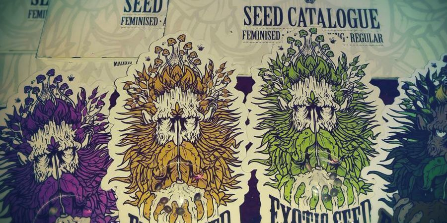 THE FUTURE LOOKS BRIGHT FOR EXOTIC SEED