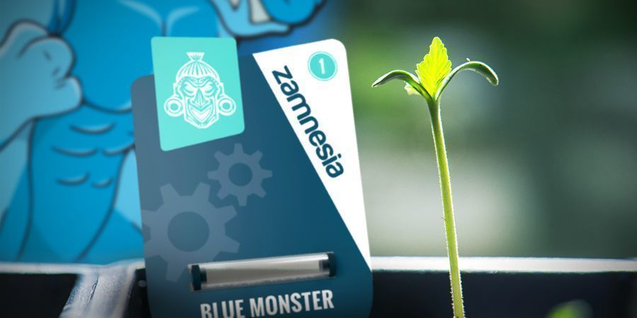 Growing Blue Monster Automatic