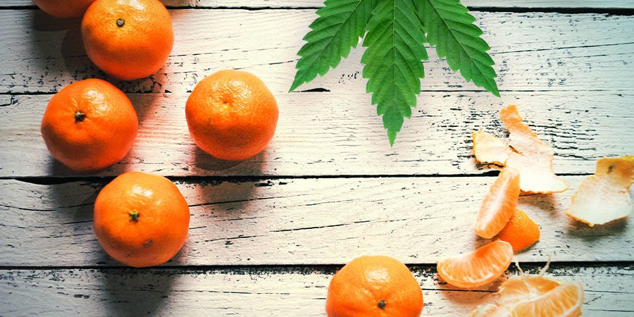 TANGERINE DREAM: FLAVOUR AND EFFECTS