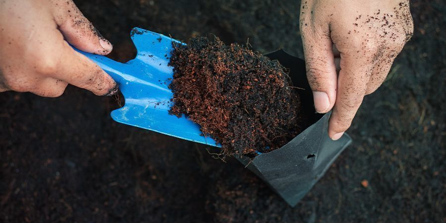 Why You Can't Use Any Old Soil For Your Cannabis Plants