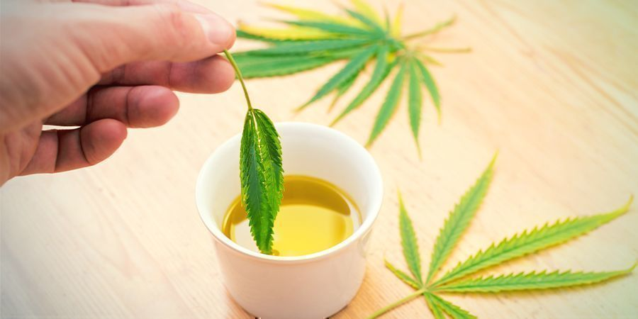 Cannabis Concentrates Edibles: Infuse Into a Fat of Choice