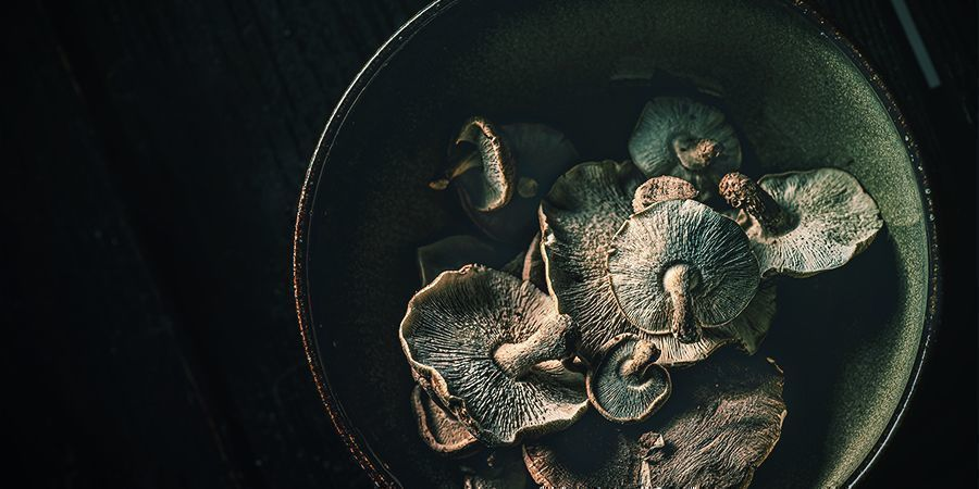 Let's Cut to the Chase: Are Magic Mushrooms Addictive?
