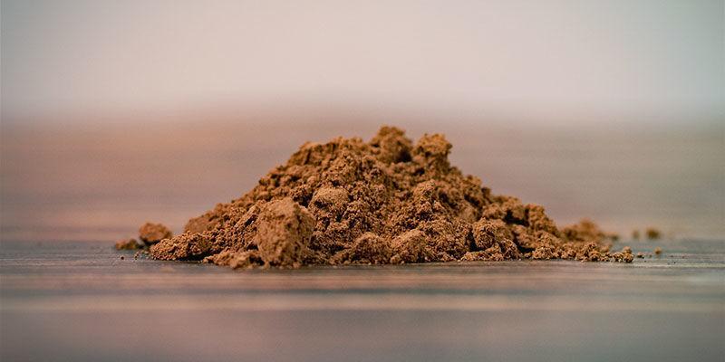 Reishi Powder