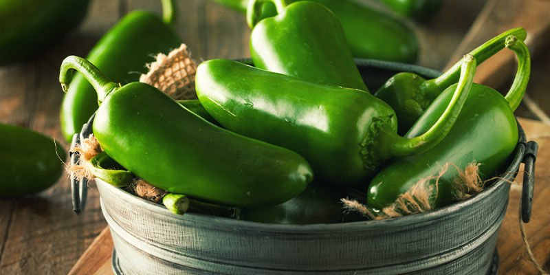Begin Your Pepper Project Today — Just One Step From Jalapeño Heaven
