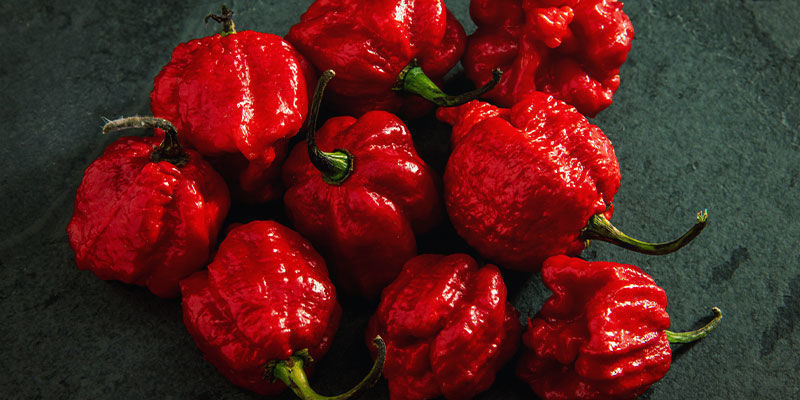 Hottest Peppers: 7 Pot Primo