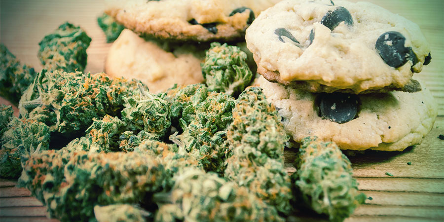 Cannabis Improves Appetite