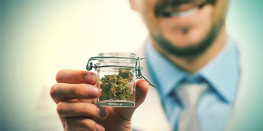 Cannabis: The Bigger Picture