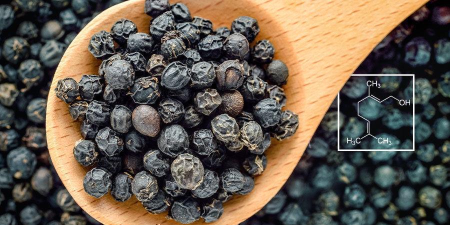The Science Behind Terpenes