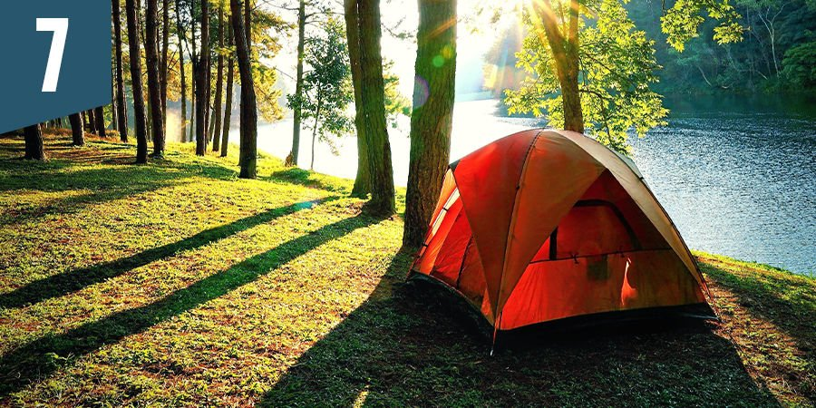 Go camping in the forest