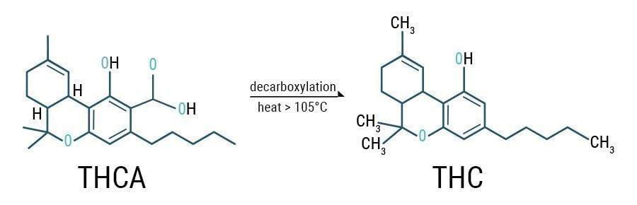 Decarboxylation THCA & THC