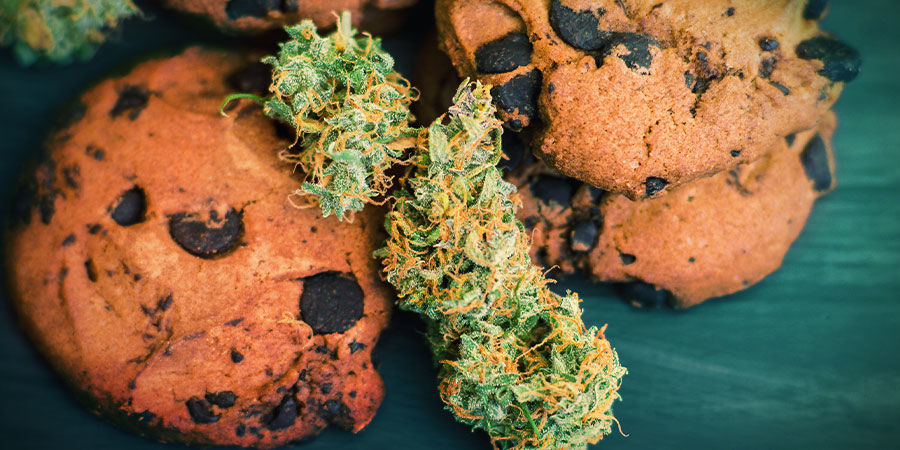 GIRL SCOUT COOKIES: FLAVOUR & EFFECTS