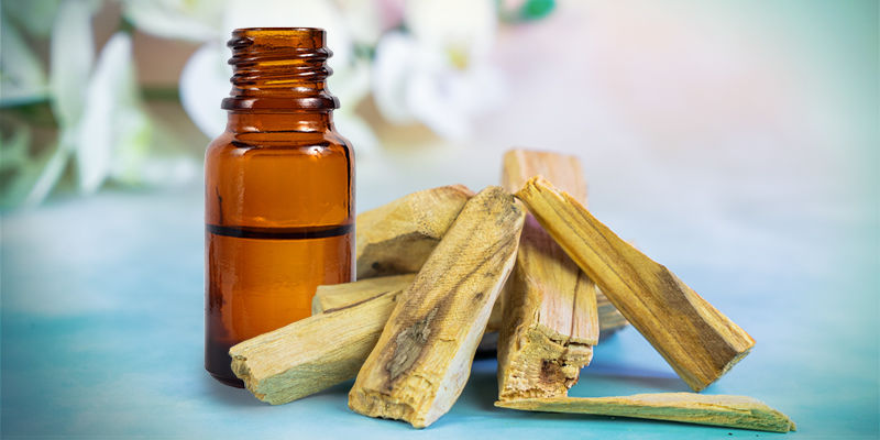 How To Burn Palo Santo Essential Oil