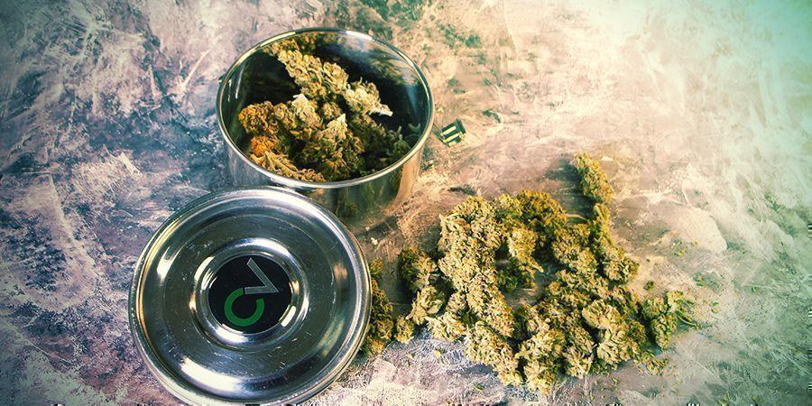 CVault storing Weed