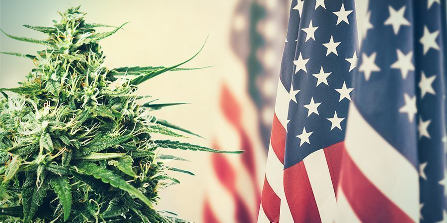 Cannabis: FROM TAXATION TO PROHIBITION