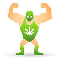 Too strong cannabis