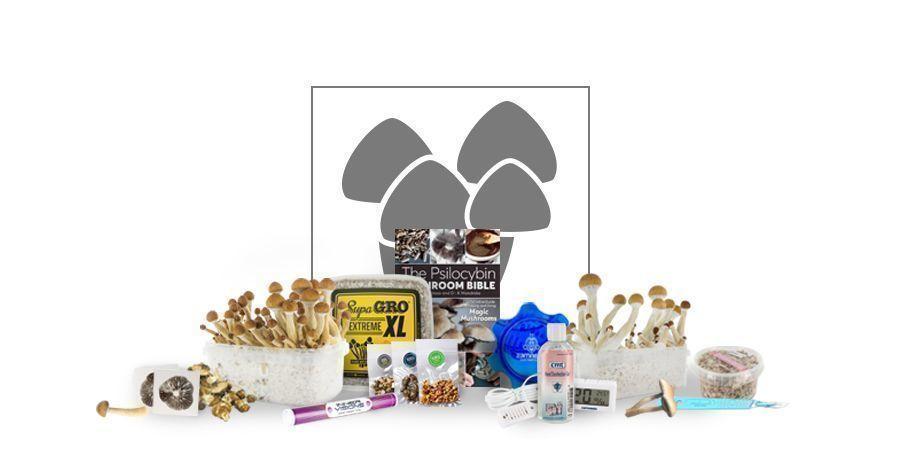Magic Mushroom Grow Supplies