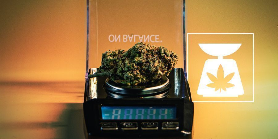Weed Weights: Everything You Need To Know