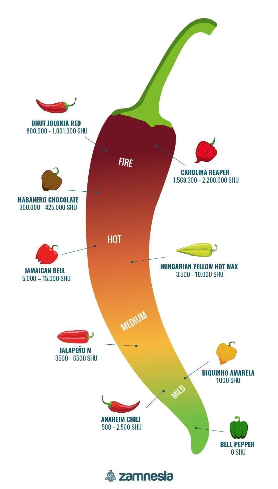Hot Peppers Infographic