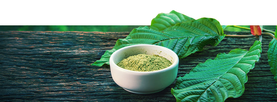 Information About Kratom