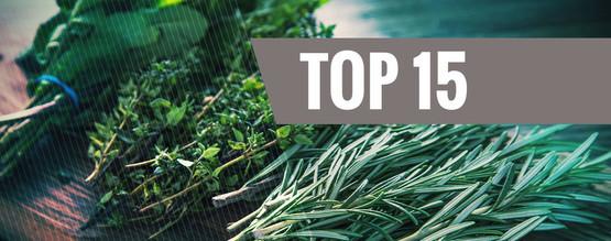 Best Legal Herbs to Vaporize