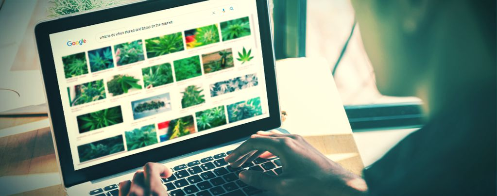 The Best Websites For Stoners