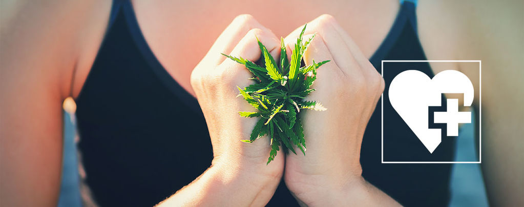 Weed Help Lose Weight