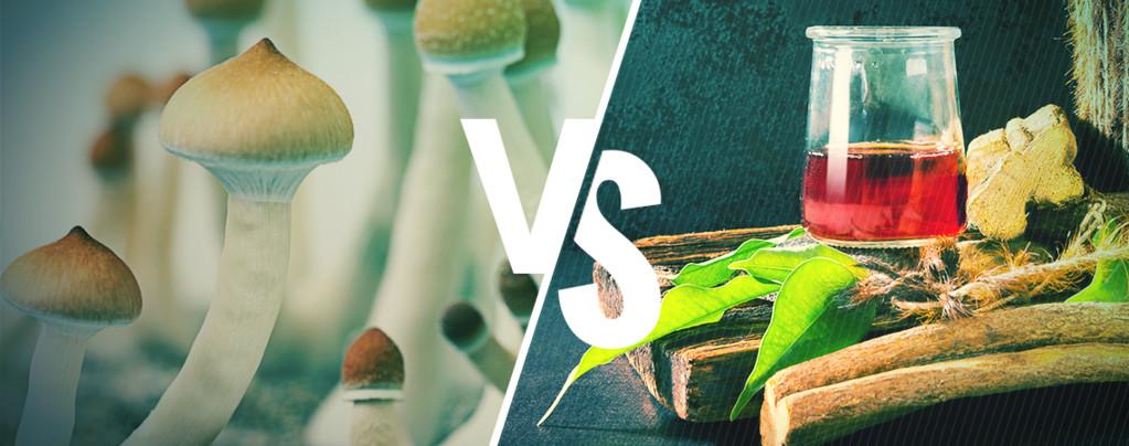 Ayahuasca vs Magic Mushrooms