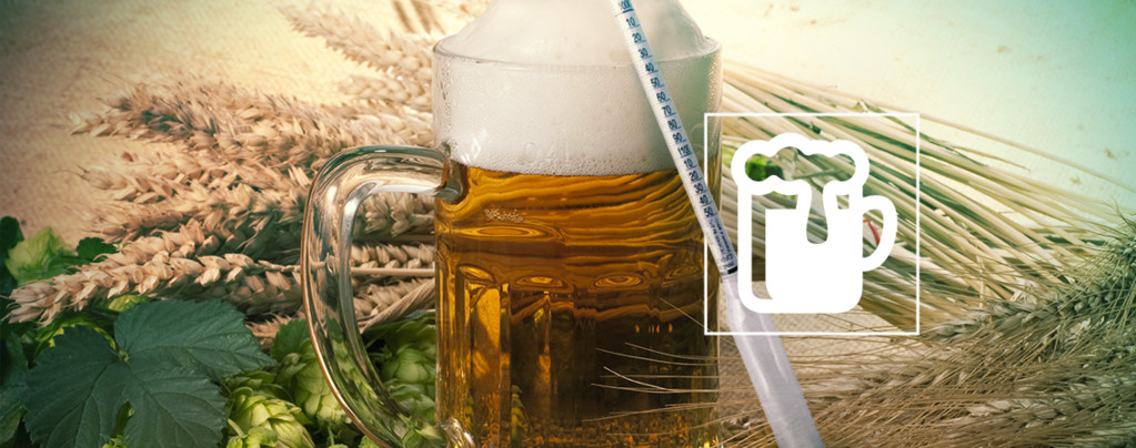 Hydrometer Vinoferm: 3 Scales (Beer)
