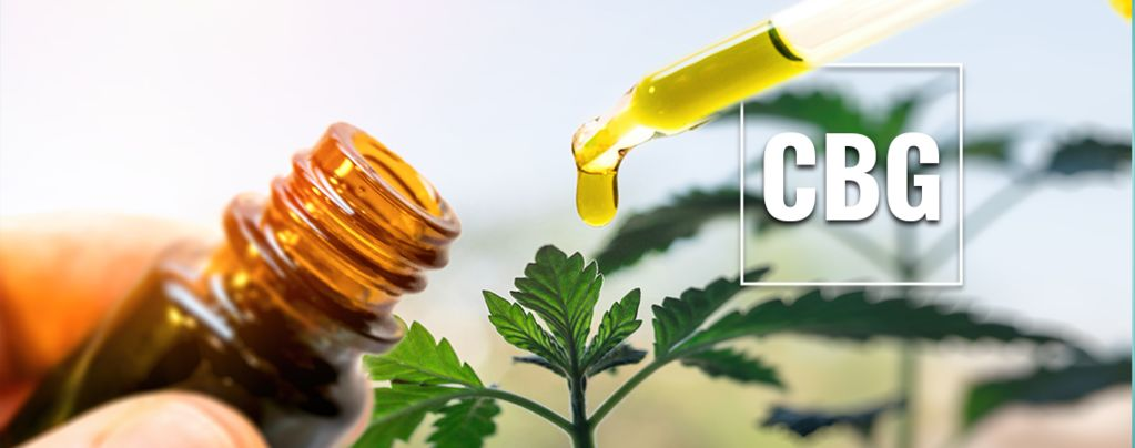 What Is CBG Oil?